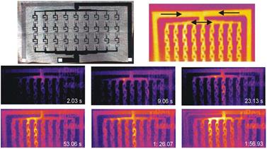 microscopia termografica microfluidica