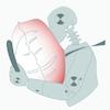 TEMA_Software de análisis de movimiento