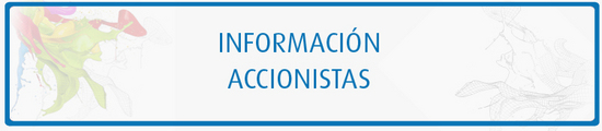 Información accionistas