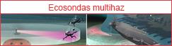 Ecosondas multihaz para seguridad