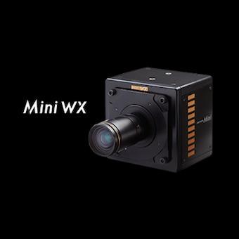 mini WX