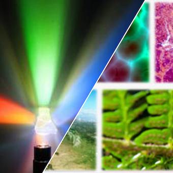 multiespectral e hiperespectral img